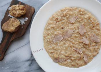 white truffle and mushroom risotto